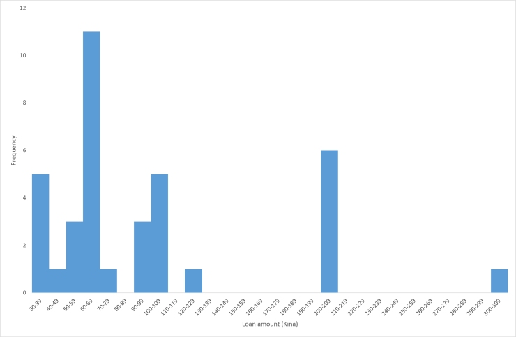 Distribution of value of loans2